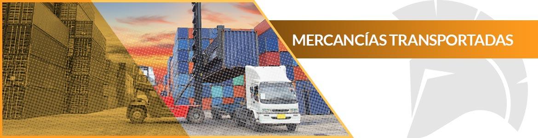 Seguro de transporte de mercancías Segurea